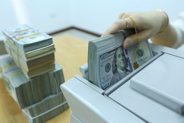 1月15日越盾对美元汇率中间价上调1越盾 hinh anh 1