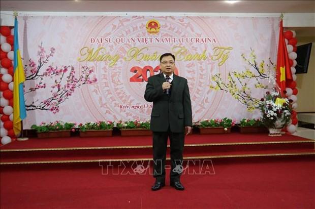 旅外越南人欢聚一堂共迎新春 hinh anh 1