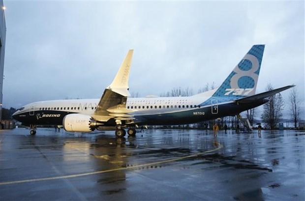 波音737MAX8坠机事故:马来西亚航空停止波音737 Max客机订单的交付 hinh anh 1
