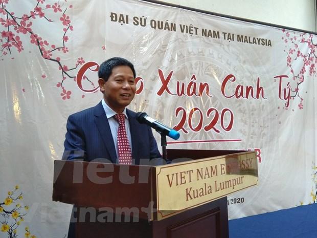 越南驻马来西亚大使馆举行2020庚子年新春见面会 hinh anh 1
