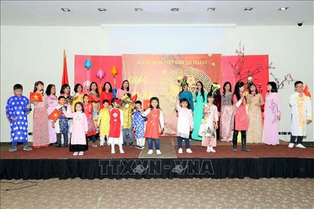 旅外越南人纷纷举行活动喜迎新春佳节 hinh anh 3