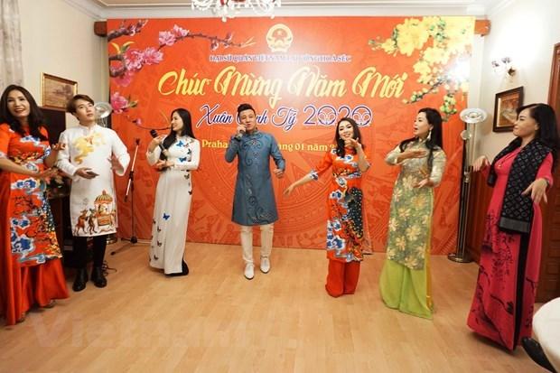 旅外越南人纷纷举行活动喜迎新春佳节 hinh anh 1