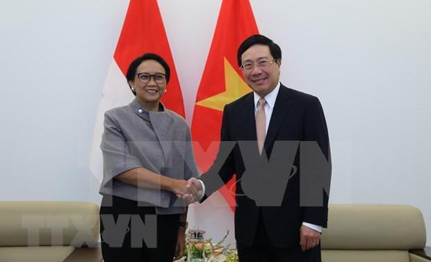 印尼促进与越南的经济合作 hinh anh 1