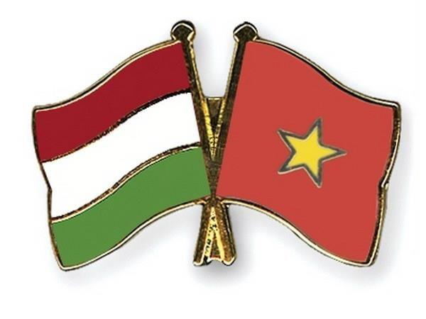 越南始终是匈牙利对外政策中的优先国家之一 hinh anh 1