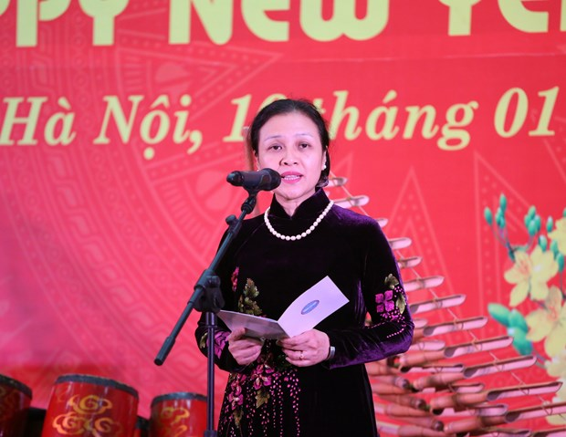 各国驻越外交使团、国际组织、非政府组织见面会在首都河内举行 hinh anh 1