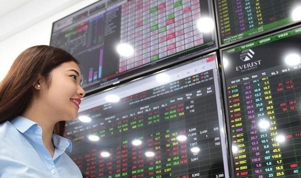 2020年越南股市继续出现诱人的投资机会 hinh anh 1