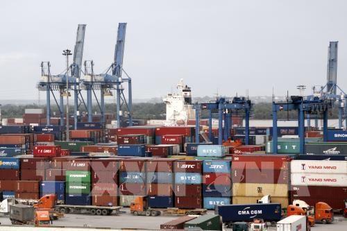 胡志明市力争实现国内生产总值增长率达8.3至8.5%的目标 hinh anh 1