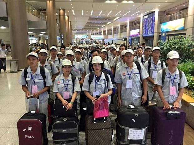超过65万名越南员工在国外工作 hinh anh 1