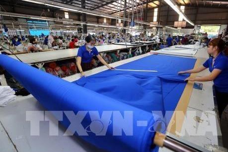 2019年越南全国新注册企业数量达13.8万家 hinh anh 1