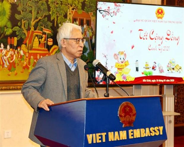 越南驻外使领馆纷纷举行春节招待会 hinh anh 2