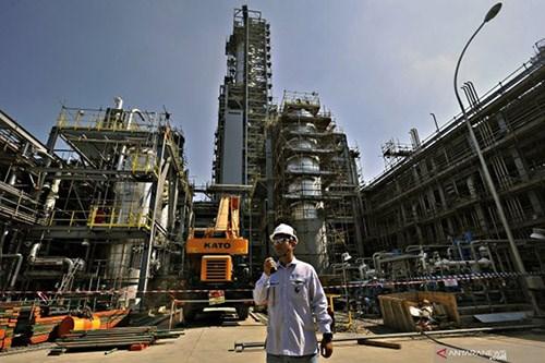中国台湾拟投资220亿美元在印尼建设炼油厂 hinh anh 1