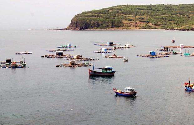 越南海洋环境:现状与对策 hinh anh 1
