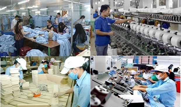 建党90周年:私人经济是越南经济的重要动力——为私人经济发展铺平道路(第二期) hinh anh 1