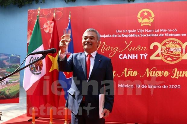 越南驻外使馆举行新春招待会喜迎新春 hinh anh 1