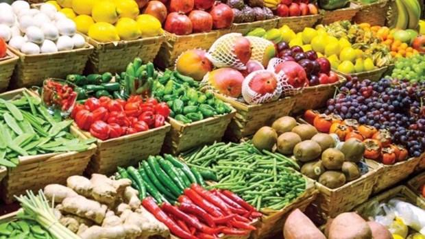 越南农产品出口应加紧渗透中国内地市场 hinh anh 1