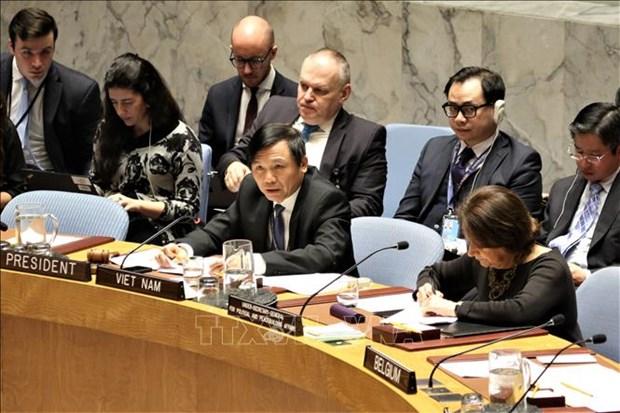 越南与联合国安理会:越南主持召开联合国安理会关于以色列和巴基斯坦局势公开会 hinh anh 1