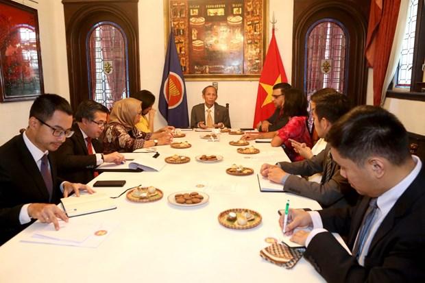 越南担任东盟驻阿根廷委员会轮值主席 hinh anh 2