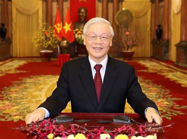 越共中央总书记、国家主席阮富仲发表2020年庚子新春贺词 hinh anh 1