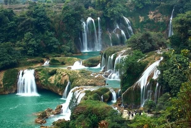 Dambri瀑布——西原地区丛林中的宏伟与壮观 hinh anh 1