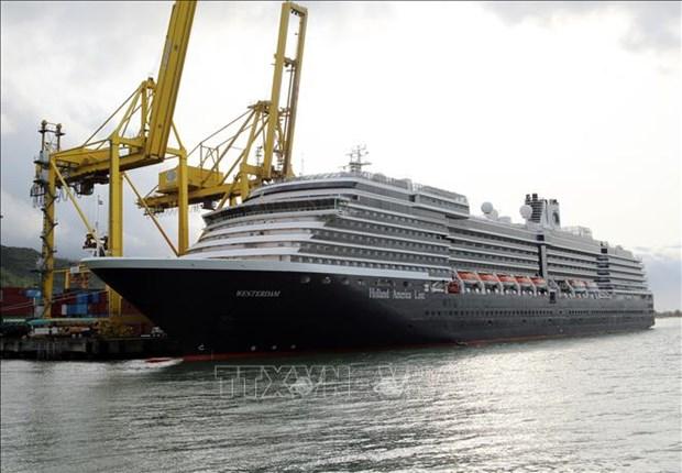 2020庚子年春节:岘港市迎接首批海运入境国际游客 hinh anh 1