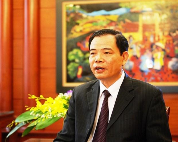 2020年越南农业力争实现出口额达到420亿美元的目标 hinh anh 2