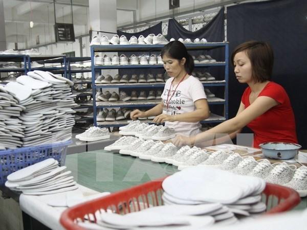 2020年越南皮革鞋业本地化率将达到60% hinh anh 1