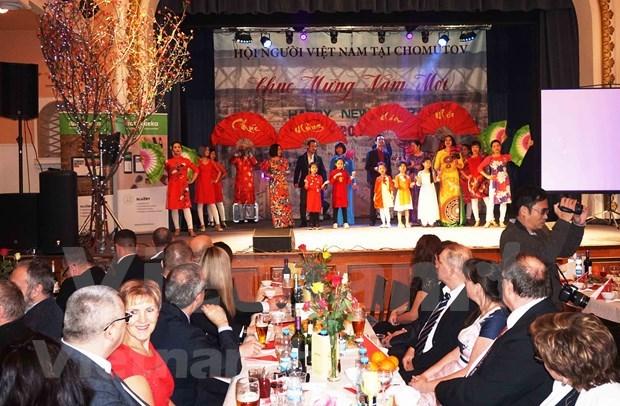 旅居捷克越南人社群纷纷举行迎新春活动 hinh anh 1