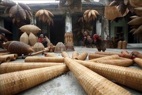 传统鱼陷阱编织——越南北部三角洲的独特传统手工艺 hinh anh 2