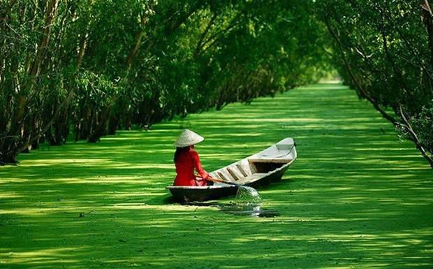 越南九龙江三角洲地区各省努力开发旅游资源 推动旅游业发展 hinh anh 1