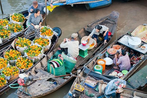 越南九龙江三角洲地区各省努力开发旅游资源 推动旅游业发展 hinh anh 2