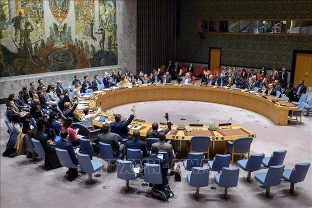 联合国安理会对叙利亚人道主义状况表示担忧—越南呼吁有关各方促进对话和平解决冲突 hinh anh 2