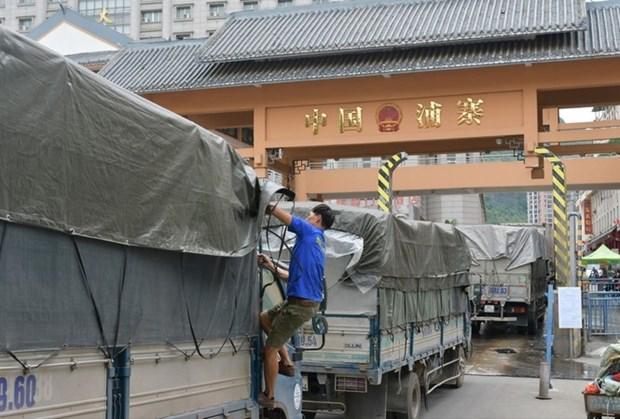 越南密切关注新型冠状病毒感染的肺炎疫情 准确评估其对进出口活动产生的影响 hinh anh 1