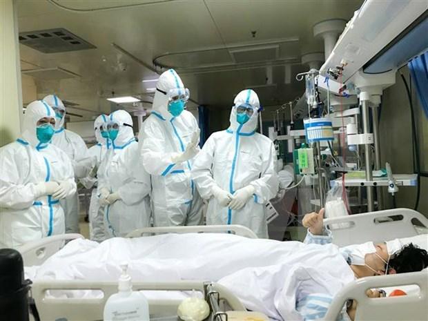 发现在中国的首位越南公民感染新冠状病毒 hinh anh 1