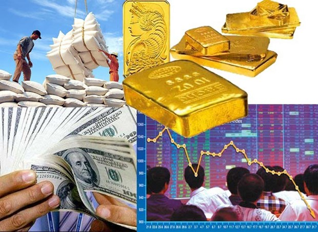 2020年越南经济发展前景与对策 hinh anh 1
