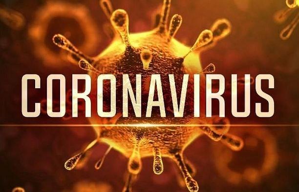 越南市场管理部门配合防控新型冠状病毒感染的肺炎疫情 hinh anh 1