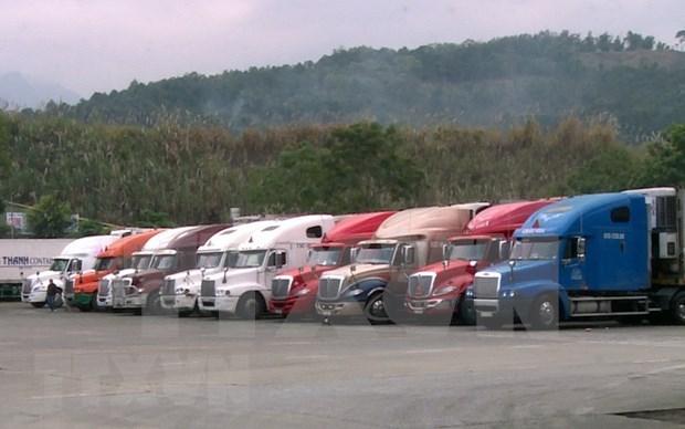 受疫情影响越南出口企业主动采取对中国市场的进出口措施 hinh anh 1