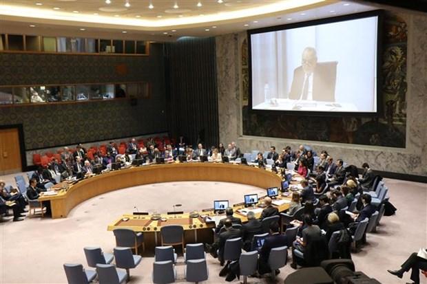 越南与联合国安理会:越南主持召开联合国安理会有关塞浦路斯和利比亚问题 的会议 hinh anh 1