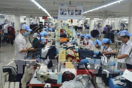 日本一直是越南对外劳务输出的重点市场 hinh anh 1