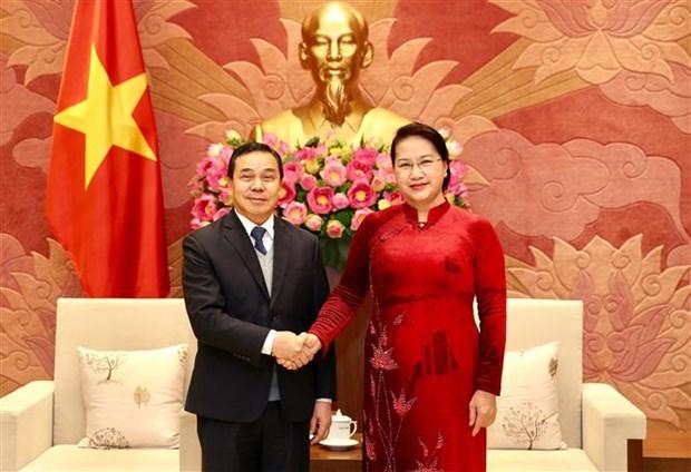 越南国会主席阮氏金银会见老挝驻越大使 hinh anh 1
