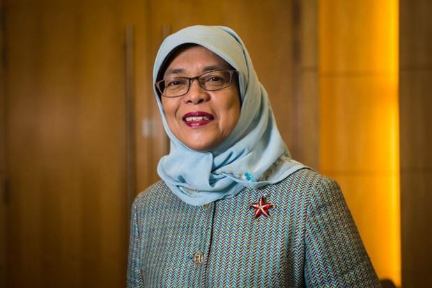 印尼与新加坡签署多项重要协议 hinh anh 1