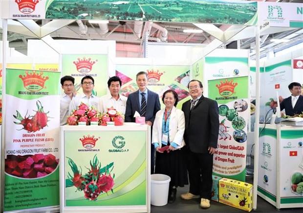 越南企业参加2020年德国柏林国际水果蔬菜展览会 hinh anh 1