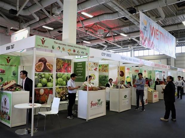 越南企业参加2020年德国柏林国际水果蔬菜展览会 hinh anh 2