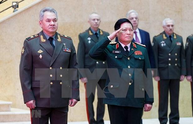 越南与俄罗斯加强合作 为地区和平与稳定做出努力 hinh anh 1