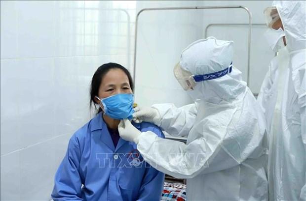 越南新增两例新型冠状病毒感染的肺炎确诊病例 hinh anh 1