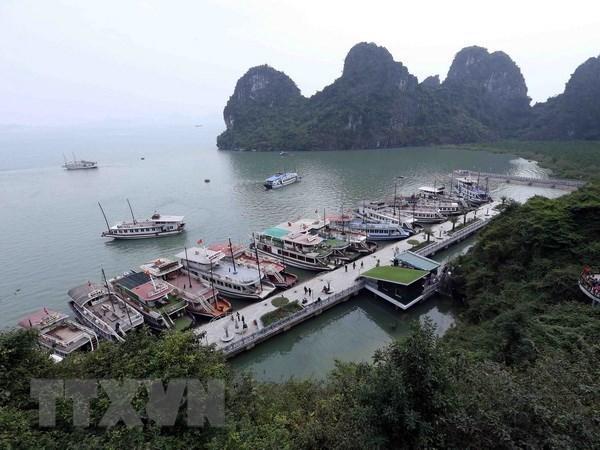新型冠状病毒感染肺炎疫情:禁止外国游客从吉婆岛前往下龙湾的消息不实 hinh anh 1