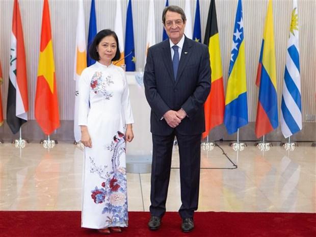 越南一向重视与塞浦路斯共和国的多方面关系 hinh anh 1