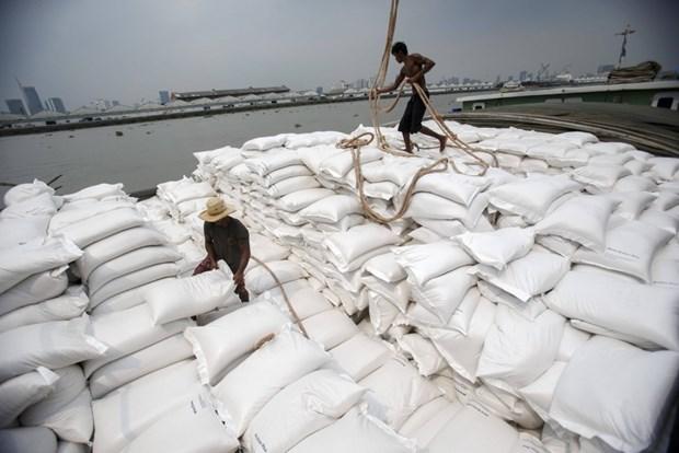 缅甸计划2019-2020财年出口250万吨大米 hinh anh 1