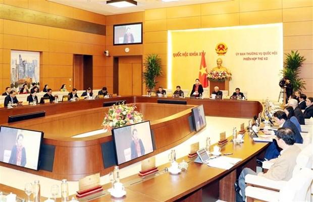 国会常委会第42次会议正式开幕 hinh anh 2