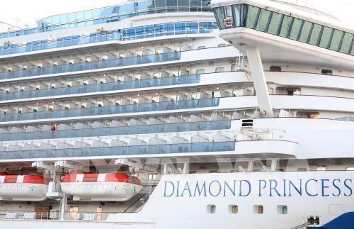 新冠肺炎疫情:Diamond Princess邮轮停靠云脚港14天后 所有服务员没有出现nCoV的症状 hinh anh 1