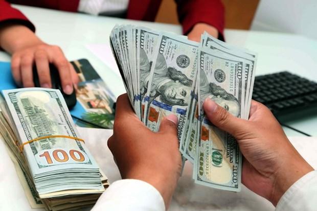 2月11日越盾对美元汇率中间价上调6越盾 hinh anh 1